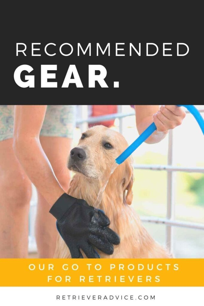 Recommended Gear - Best Products for Retrievers